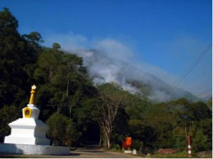 A forest fire in Tingtibe, Zhemgang